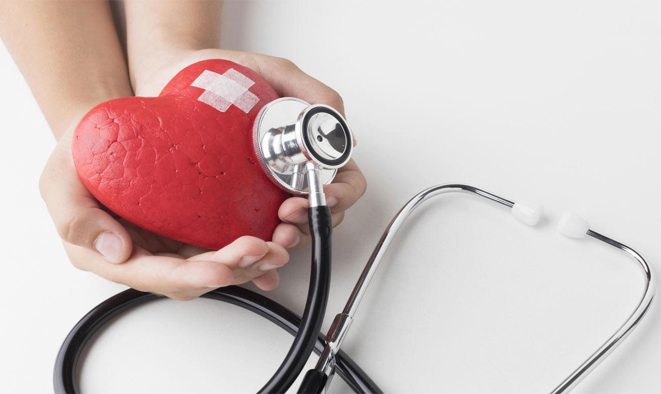 Kalbin İletim Sistemi